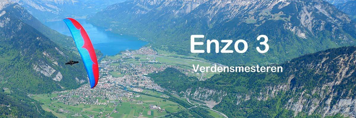 Enzo3